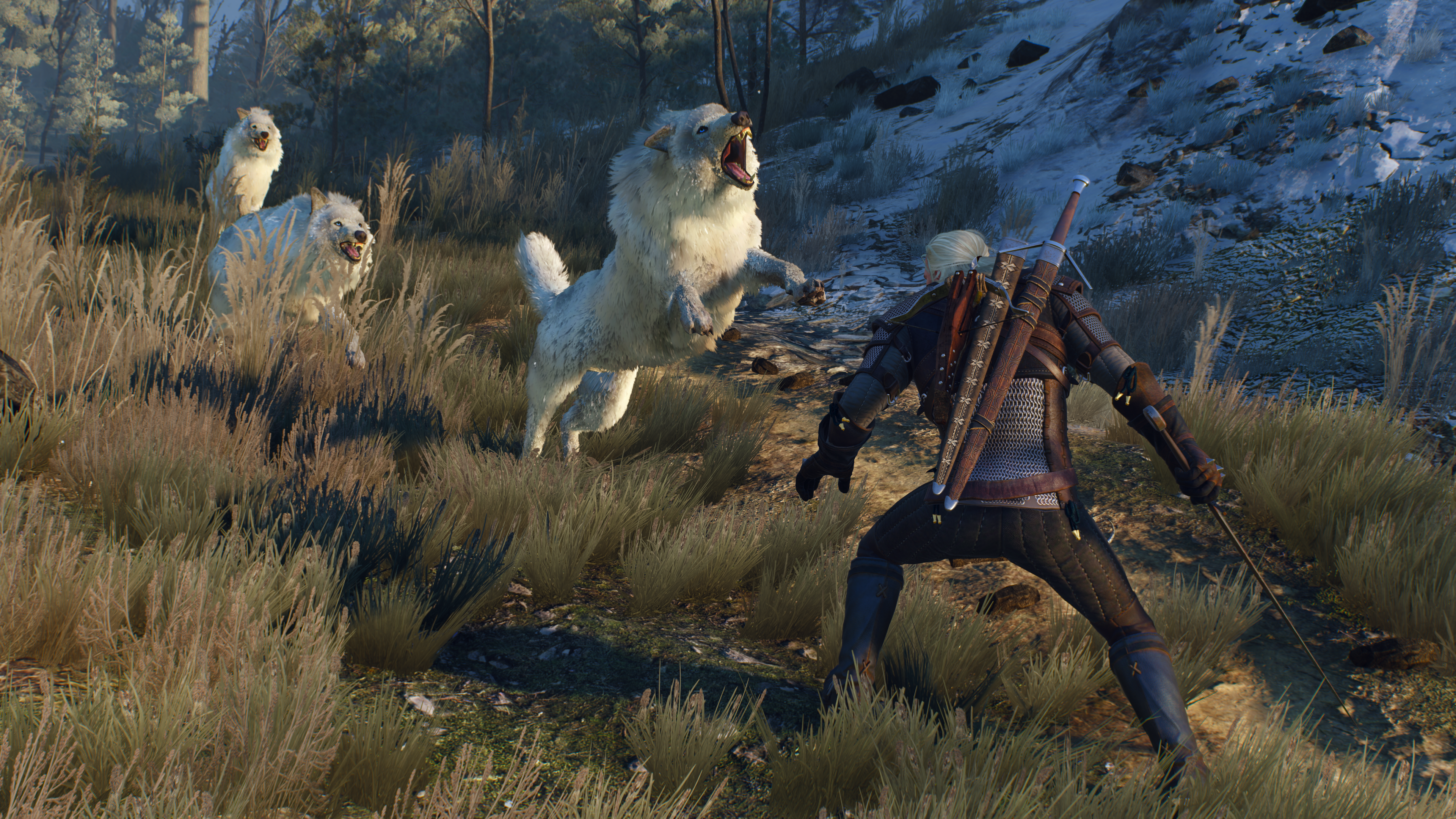 The_Witcher_3_Wild_Hunt_These_animals_ca